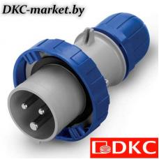 DIS2181633P Вилка кабельная с безвинтовыми клеммами IP67 16A 2P+E 230В